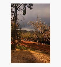 """""""Filtered Shades Of Light"""" Photographic Print"""