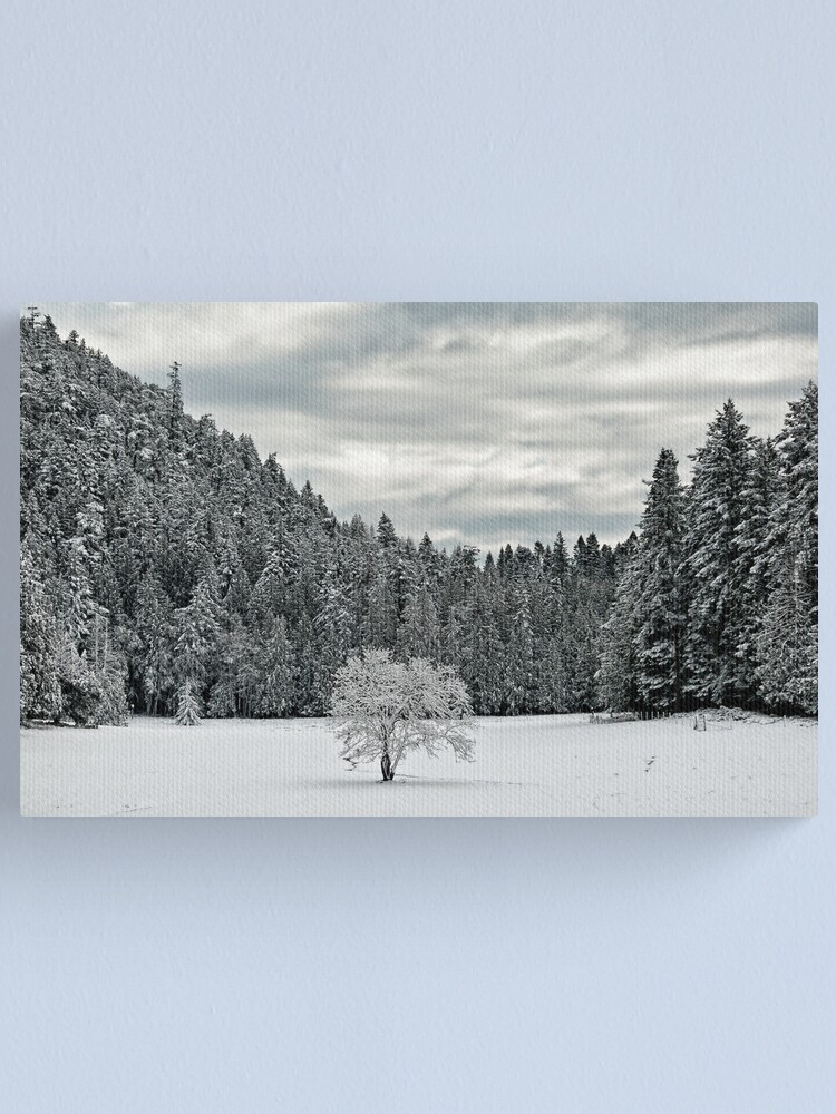 Alternate view of Lone Tree in the WInter Canvas Print