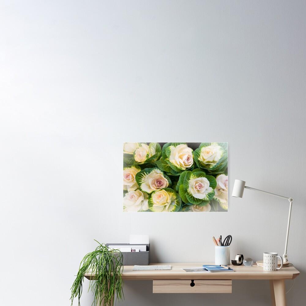 Flowering Kale Bouquet Poster
