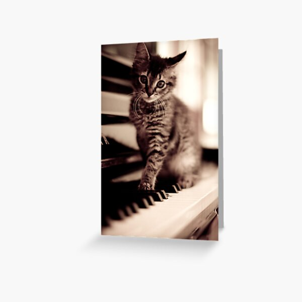 World Class Pianist... Greeting Card