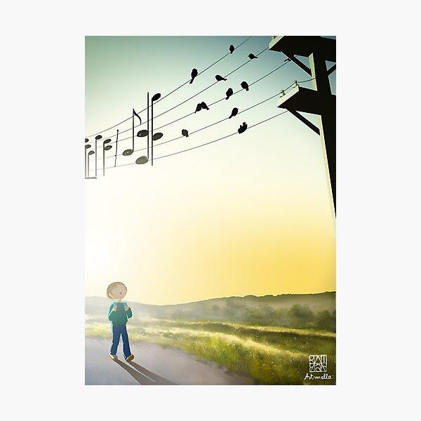Chant d'oiseaux au matin - Early chanting birds Photographic Print