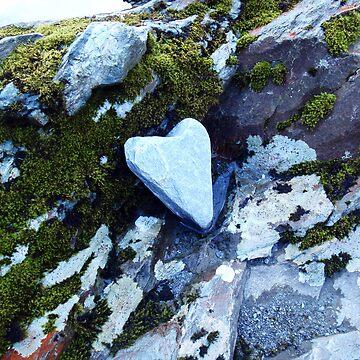 Heart by jessecain