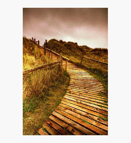 Sand Dunes (West Beach Littlehampton) Photographic Print