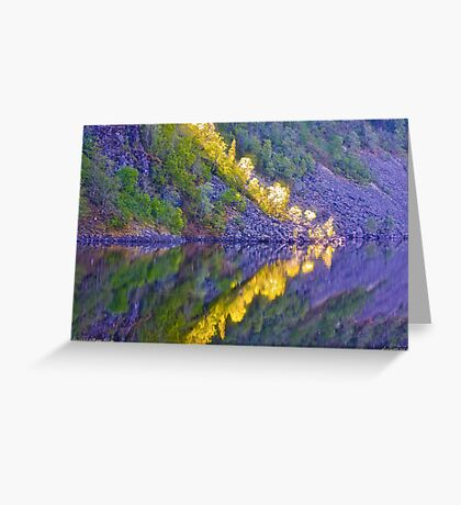 Audiemus - my walking with Lord  , Blessing color , happiness and peace. Amen. by Brown Sugar.Favorites:  9 Views: 491.thanks !!! Greeting Card