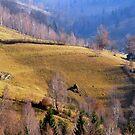Romanian village by Iulia  Weiss