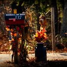 Autumn Along the Rural Road by Monica M. Scanlan