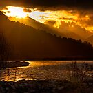 Gold River by Mike Johnson