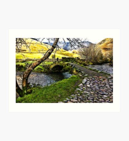 Bridge Approach  - Wasdale Head Art Print