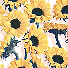 Sunflowers with Blush and Blue by micklyn