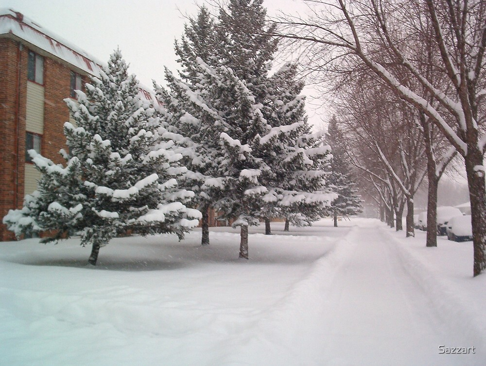 Moorhead MN First Snowstorm1a by Sazzart
