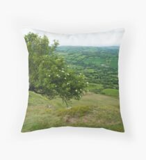 Hawthorn in the Border Country Throw Pillow