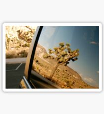 yucca reflection in the carpark at joshua tree Sticker