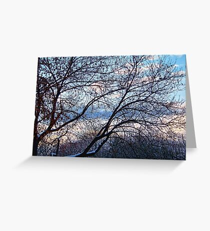 A White Thanksgiving 2 Greeting Card