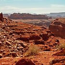 View from atop Shafer Trail by Owed To Nature