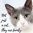 Not just a cat...they are family. by Kamira Gayle