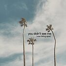 you didn't see me by stolen lyric