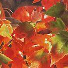 Fireleaves  by Heidi Schwandt Garner