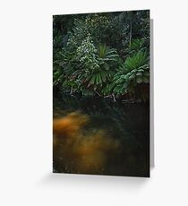 Fernglade reflections Greeting Card