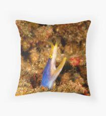 blue ribbon eel - rhinomuraena quaesita Throw Pillow
