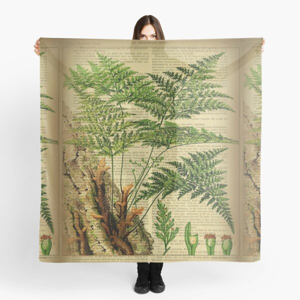 Botanical print, on old book page - Fern Scarf