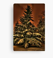 Eye of the snowstorm Canvas Print