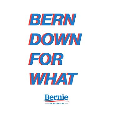 BERN DOWN FOR WHAT?  ($ goes to Bernie's campaign fund) by valyrianheart