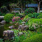 Gardens 4 by Keith G. Hawley
