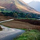 Lake Road - Wast Water by Trevor Kersley