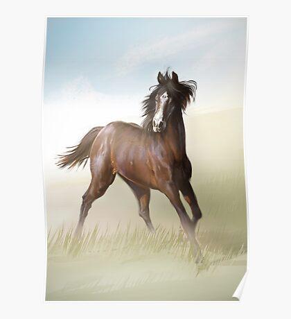 Horsey Poster