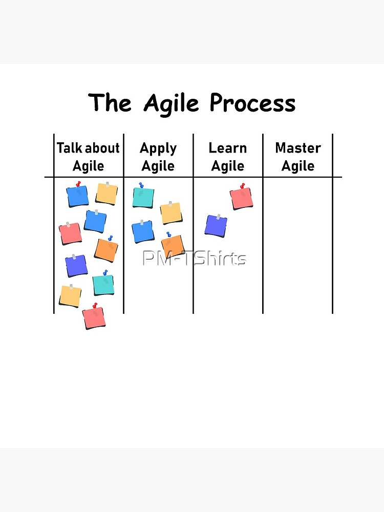 Agile Process AOE project process management by PM-TShirts
