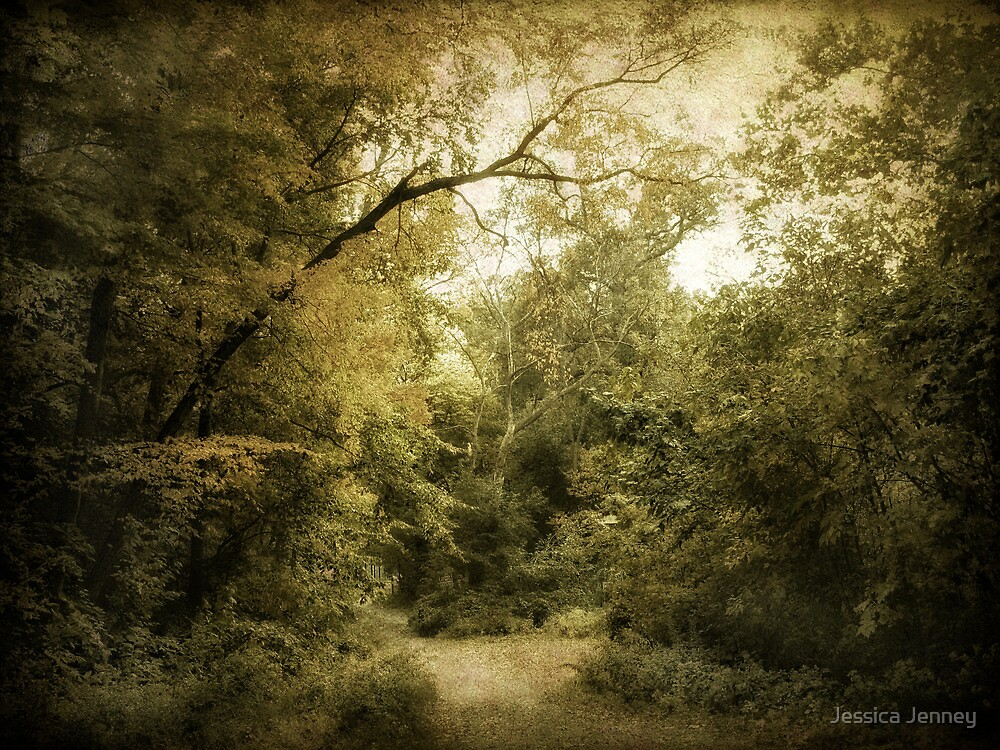 The Clearing by Jessica Jenney