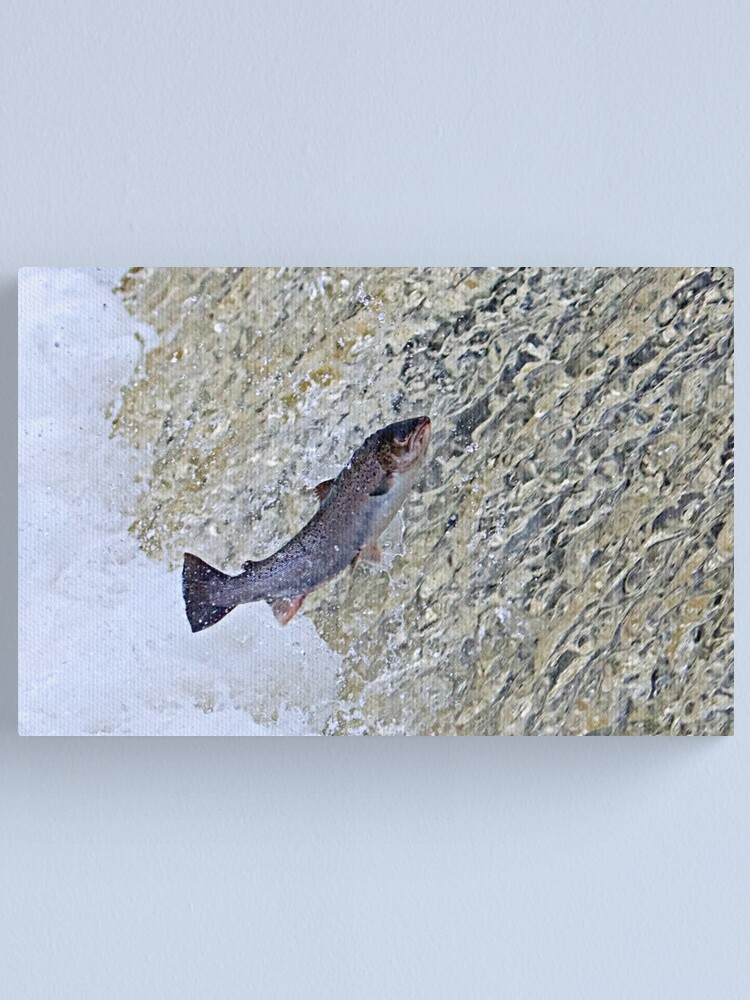 Alternate view of Leap of Faith Canvas Print