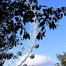 The London Eye by Rees Adams