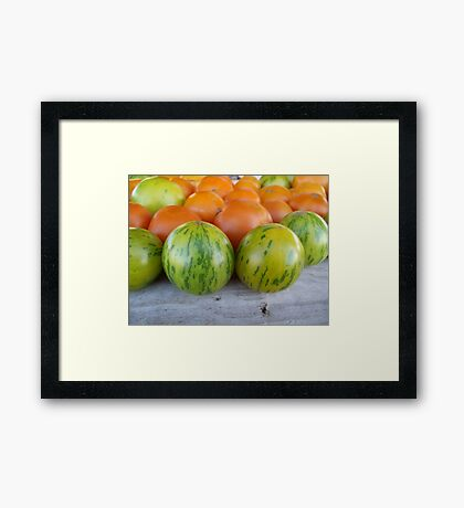Green Zebra Tomatoes Framed Print
