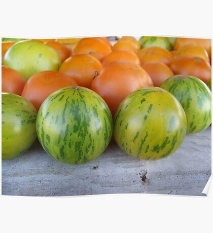 Green Zebra Tomatoes Poster