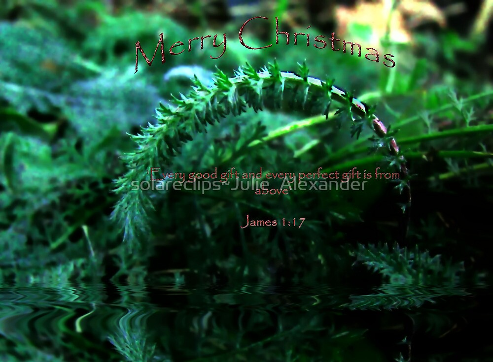 Christmas card by solareclips~Julie  Alexander