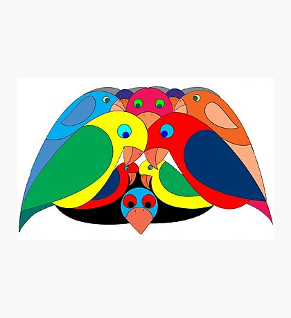Colourful parrots Photographic Print