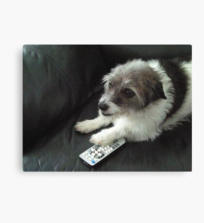 Don't you dare take that channel changer. Canvas Print