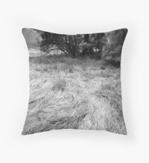 brush stroke Throw Pillow