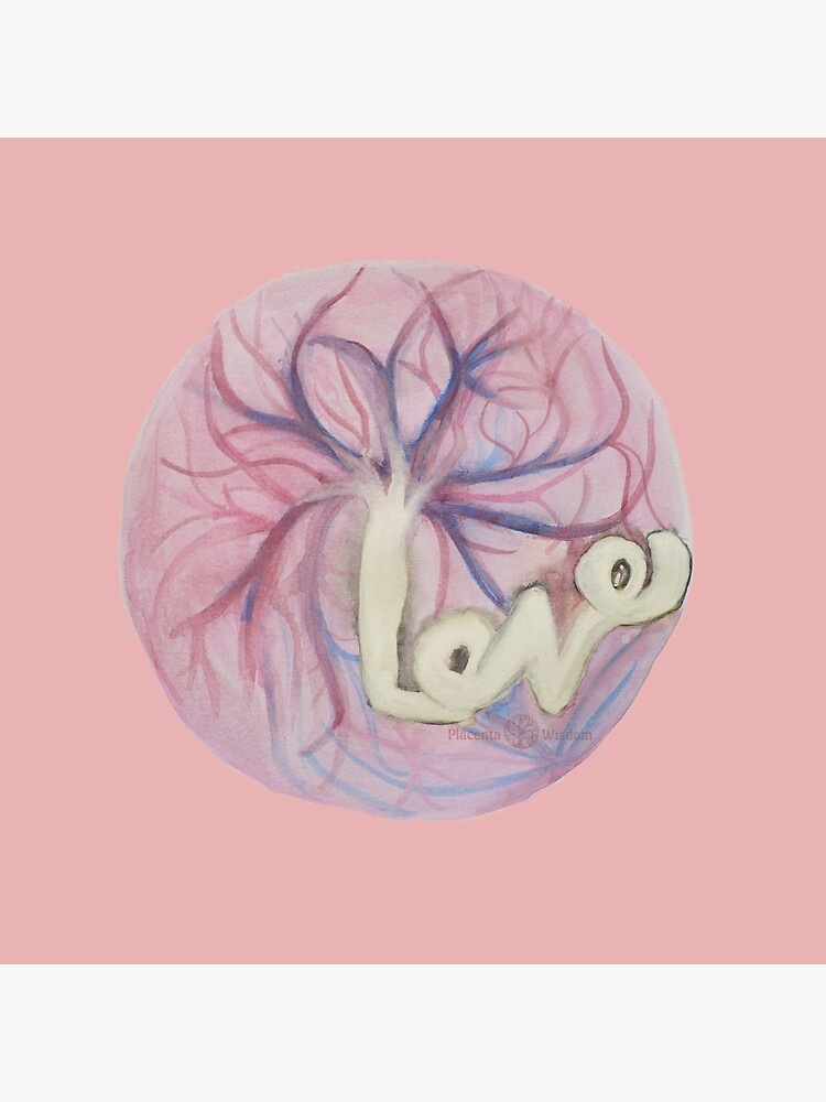 Placenta Love by placentawisdom