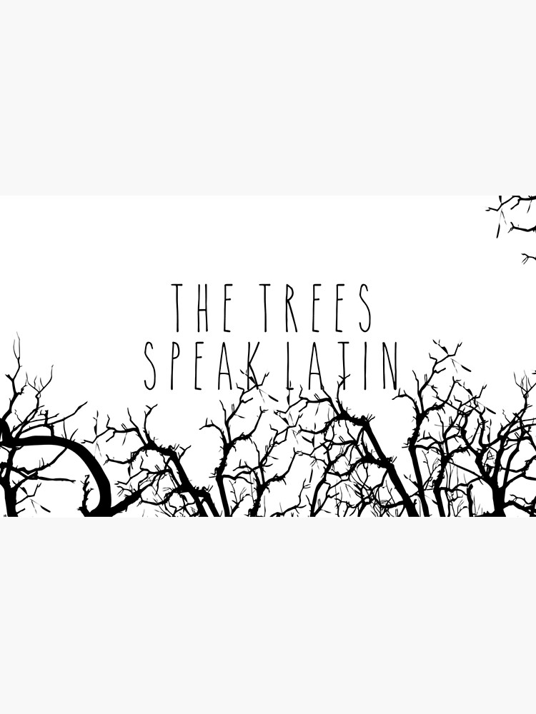 Die Bäume sprechen Latein von brainsandbooks