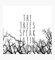 The trees speak latin Photographic Print