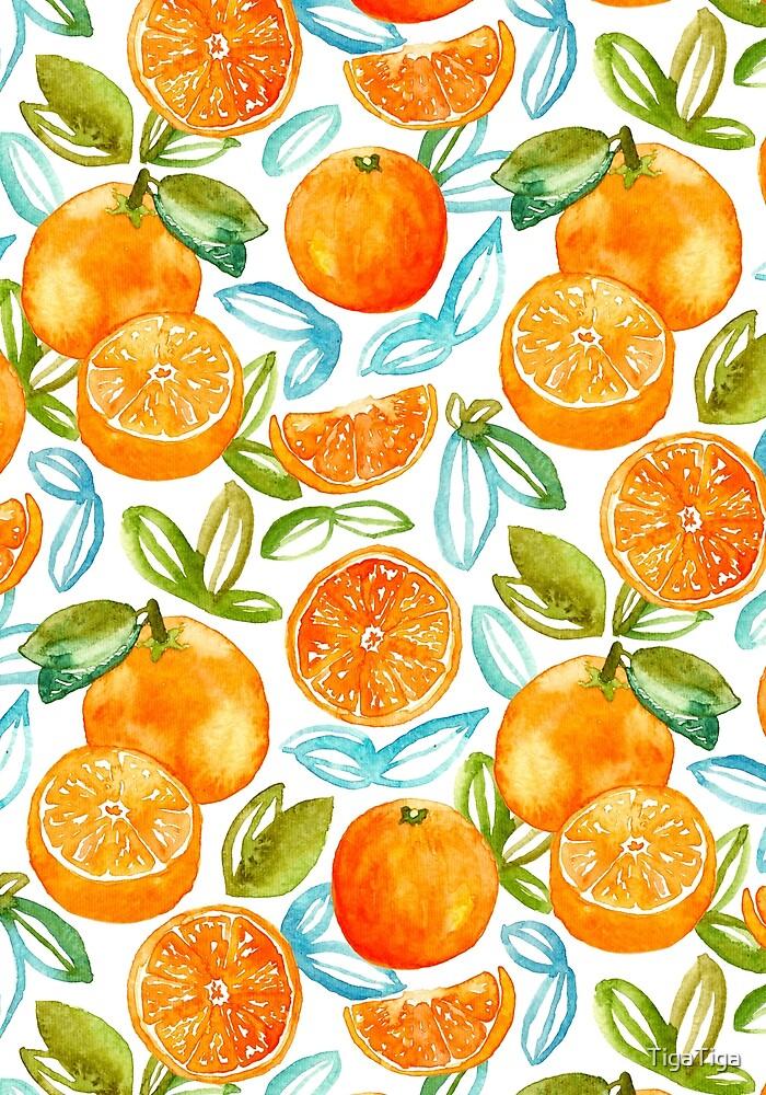 Oranges  by TigaTiga