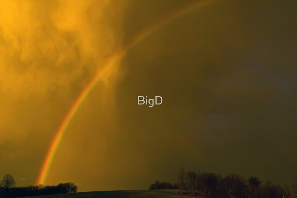 God's Promise by BigD