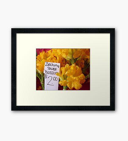 Squash Blossoms Framed Print