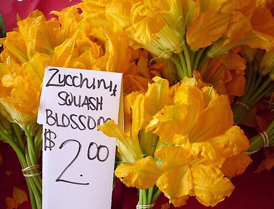 Squash Blossoms by Kimberly Morales