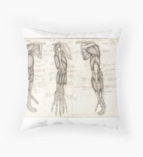 Human Anatomy 4 Throw Pillow