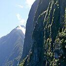 Fiord Cliffs, Milford Sound, South Island, NZ. by johnrf