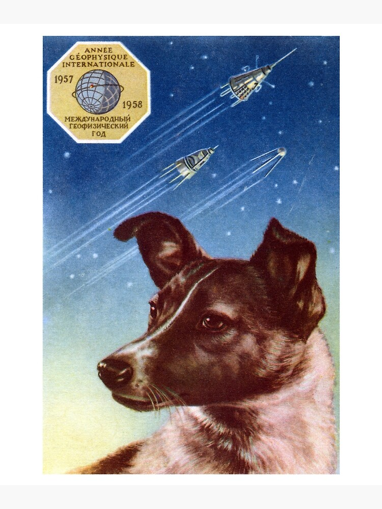 1958 Laika, First Dog in Space by historicimage