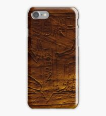 Egytian Tomb Inscriptions  iPhone Case/Skin